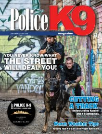 PK9 Issue 58