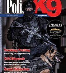 PK9 Issue 60
