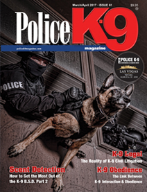 PK9 Issue 61