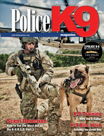 PK9 Issue 62