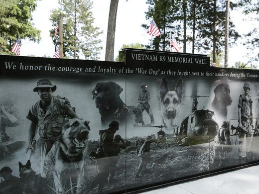 Image result for memorial to war dogs images