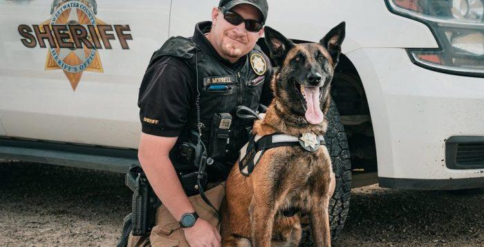 News & Videos | Police K-9 Magazine